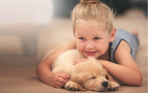 На сайте WalletHub размещен подробный рейтинг городов, наиболее благоприятных для содержания домашних животных по данным 2016 года.