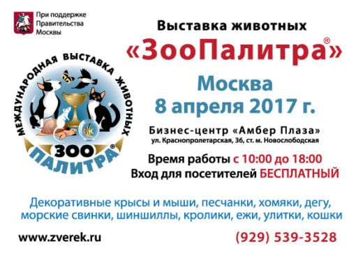 Москве 8 апреля 2017 года в помещении бизнес-центра «Амбер-Плаза» (м. Новослободская, ул. Краснопролетарская, д.36) состоится очередная выставка мелких домашних животных «ЗооПалитра».