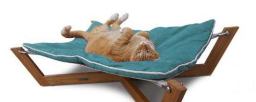 В настоящее время бурно развивается рынок мебели для домашних животных. Если год назад домик для кошки можно было купить только через Интернет, то сейчас его можно найти практически в каждом зоомагазине.