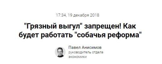 """""""Грязный выгул"""" запрещен! Как будет работать """"собачья реформа"""""""