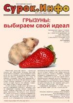 Газета Сурок.Инфо