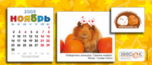 """Агентство """"Родемакс"""" разработало дизайн календаря для портала Morsvinki.ru 15"""