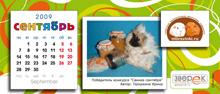 """Агентство """"Родемакс"""" разработало дизайн календаря для портала Morsvinki.ru 13"""