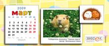 """Агентство """"Родемакс"""" разработало дизайн календаря для портала Morsvinki.ru 7"""