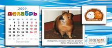 """Агентство """"Родемакс"""" разработало дизайн календаря для портала Morsvinki.ru 16"""