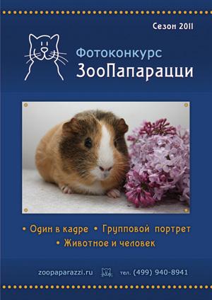 """Фотоконкурс """"ЗооПапарацци"""""""