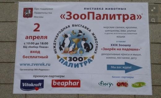 2 апреля 2016 года в Москве в помещении бизнес-центра «Амбер Плаза» прошла выставка домашних животных «ЗооПалитра», а также XXIX Зоошоу «Зверек на ладошке». Мероприятие было проведено при информационной поддержке Правительства Москвы.