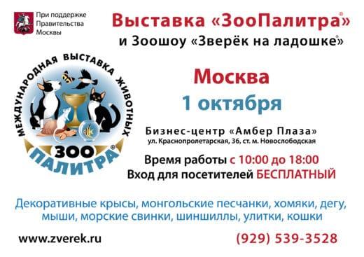 1 октября 2016 года в Москве в бизнес-центре «Амбер-Плаза» (Краснопролетарская ул. 36, ст. м. Новослободская) состоялась очередная выставка домашних животных «ЗооПалитра» и юбилейное XXX Зоошоу «Зверек на ладошке».