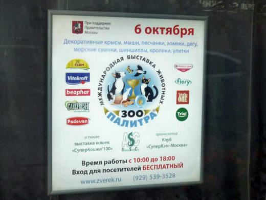 6 октября 2018 года в Москве в Бизнес-центр «Амбер Плаза»,по адресуул. Краснопролетарская, 36 состоялась очередная выставка мелких домашних животных «ЗооПалитра».