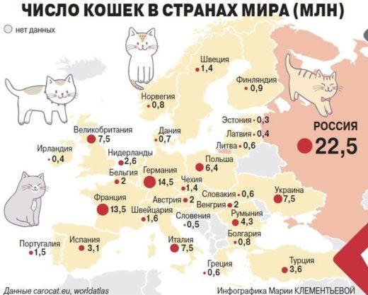 Число кошек в странах мира (млн)